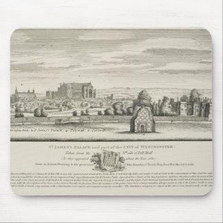 El palacio y la pieza de San Jaime de la ciudad de Alfombrilla De Ratones