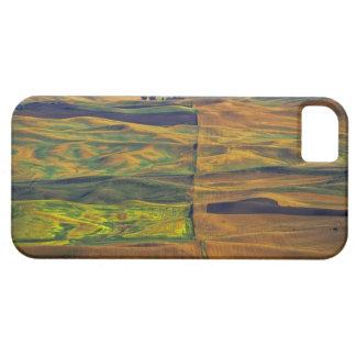 El Palouse de la mota de Steptoe, Colfax, iPhone 5 Funda