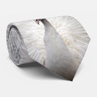 El panel blanco del pavo real tres corbata