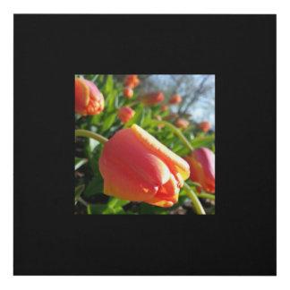 El panel de la flor cuadro