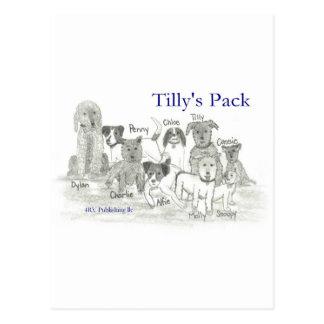 El paquete de Tilly Postal