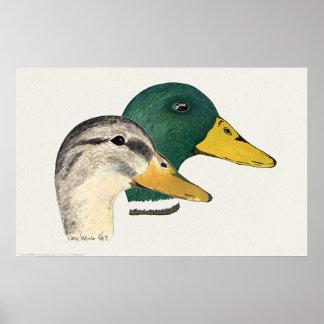El par de pato silvestre Ducks Drake y la gallina Posters
