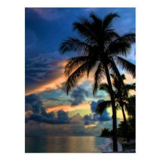 ¡El paraíso… es donde usted está Tarjetas Postales