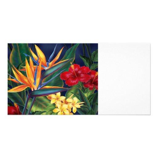 El paraíso tropical las tarjetas invita y de la tarjetas fotograficas personalizadas