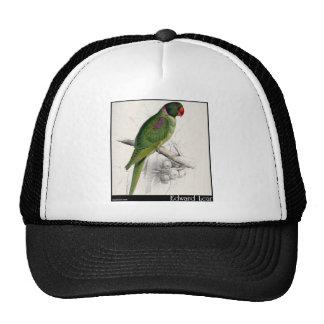 El Parakeet encapuchado de Edward Lear Gorra