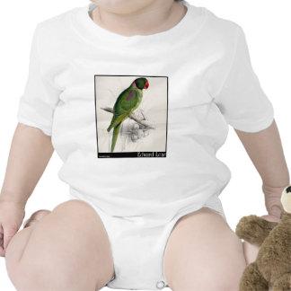 El Parakeet encapuchado de Edward Lear Traje De Bebé