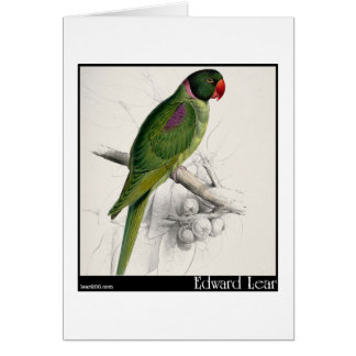 El Parakeet encapuchado de Edward Lear Felicitación