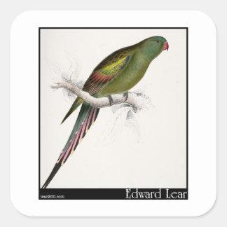 El Parakeet Flor-Emplumado de Edward Lear Pegatinas