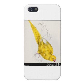 El Parakeet Rosa-Anillado de Edward Lear iPhone 5 Protectores