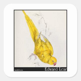 El Parakeet Rosa-Anillado de Edward Lear Calcomania Cuadradas Personalizada