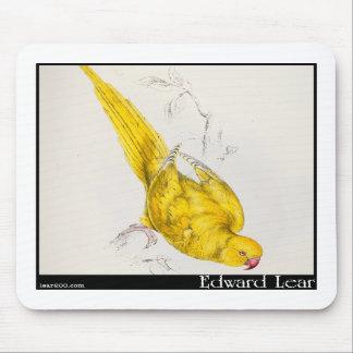 El Parakeet Rosa-Anillado de Edward Lear Alfombrilla De Ratón