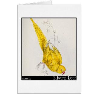 El Parakeet Rosa-Anillado de Edward Lear Tarjetas