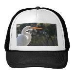 El parecer hecho excursionismo Egret blanco derech Gorra