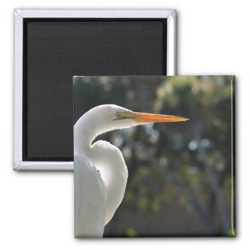 El parecer hecho excursionismo Egret blanco derech Iman Para Frigorífico