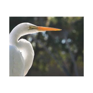 El parecer hecho excursionismo Egret blanco derech Impresion En Lona
