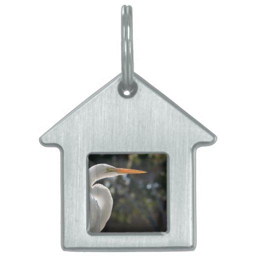 El parecer hecho excursionismo Egret blanco derech Placas Mascota