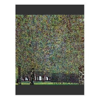 El parque de Gustavo Klimt Postal