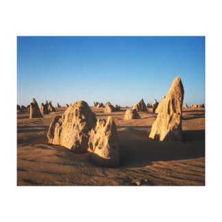 El parque nacional de Nambung del desierto de los Impresión De Lienzo
