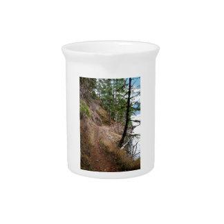 El parque nacional olímpico del rastro Spruce del Jarrones