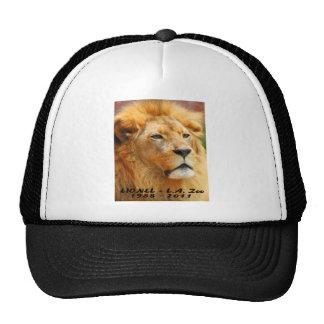 El parque zoológico 061610 Lionel del LA murió 042 Gorras