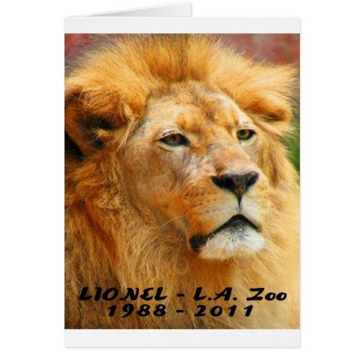 El parque zoológico 061610 Lionel del LA murió 042 Felicitación