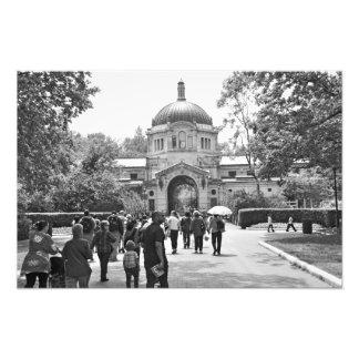 El parque zoológico de Bronx Cojinete