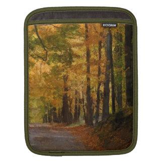 El paseo colorido del otoño pensó los árboles mangas de iPad