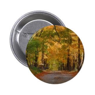 El paseo colorido del otoño pensó los árboles pins