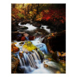 El paseo de otoño poster