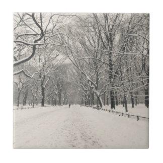 El paseo del poeta - invierno del Central Park Azulejo Ceramica