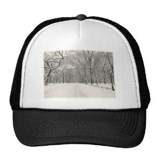 El paseo del poeta - invierno del Central Park Gorro De Camionero