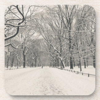 El paseo del poeta - invierno del Central Park Posavasos De Bebida