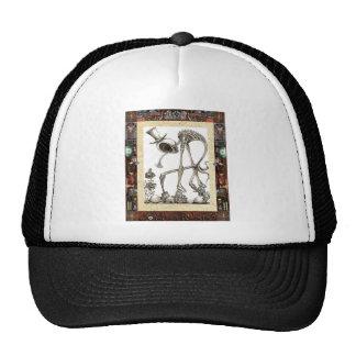 El paseo enmarcado gorras