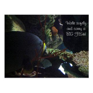 El paseo suavemente y lleva un pescado grande tarjetas postales