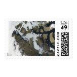El paso del noroeste sellos