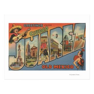 El Paso Texas - Ciudad Juarez Post Card