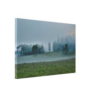El pasto de dios, bosque brumoso y escena de la lienzo envuelto para galerias