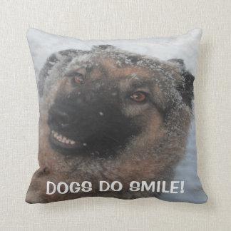 El pastor alemán que sonríe, perros de la almohada