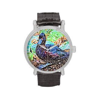 el pato coloreó el pájaro de la mirada del lápiz relojes
