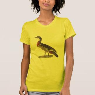 El pato de madera(sponsa de las anecdotarios) camiseta