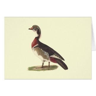 El pato de madera(sponsa de las anecdotarios) tarjeta de felicitación
