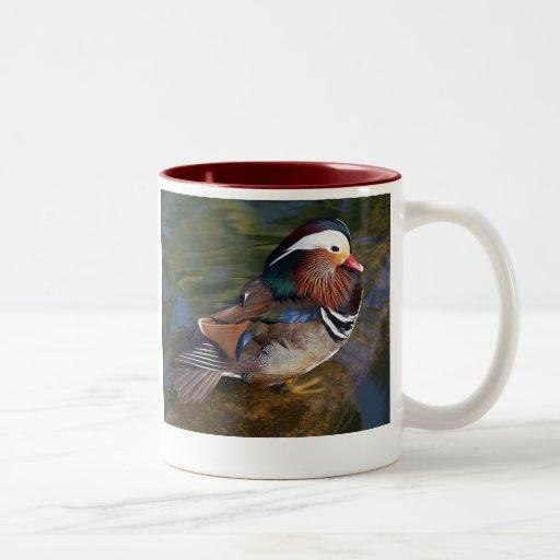 el pato de mandarín dos-entonó la taza de cerámica