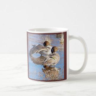 El pato rojizo Ducks la taza