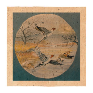 El pato rojizo Ducks los prácticos de costa Posavasos