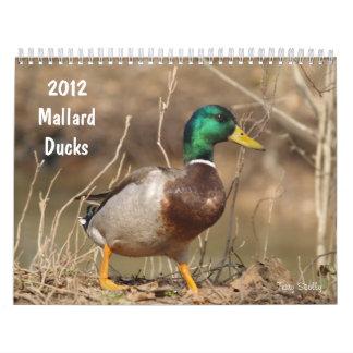 El pato silvestre de la caza Ducks el calendario