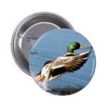 El pato silvestre Drake toma vuelo Pin