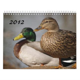 El pato silvestre Ducks el calendario 2012 de los