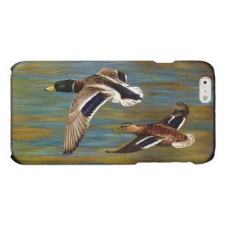 El pato silvestre Ducks volar sobre la charca