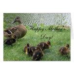 El pato silvestre feliz del día de madre Ducks la  Tarjeta