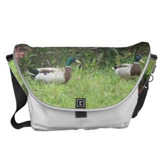 El pato silvestre masculino Ducks grande Bolsas Messenger